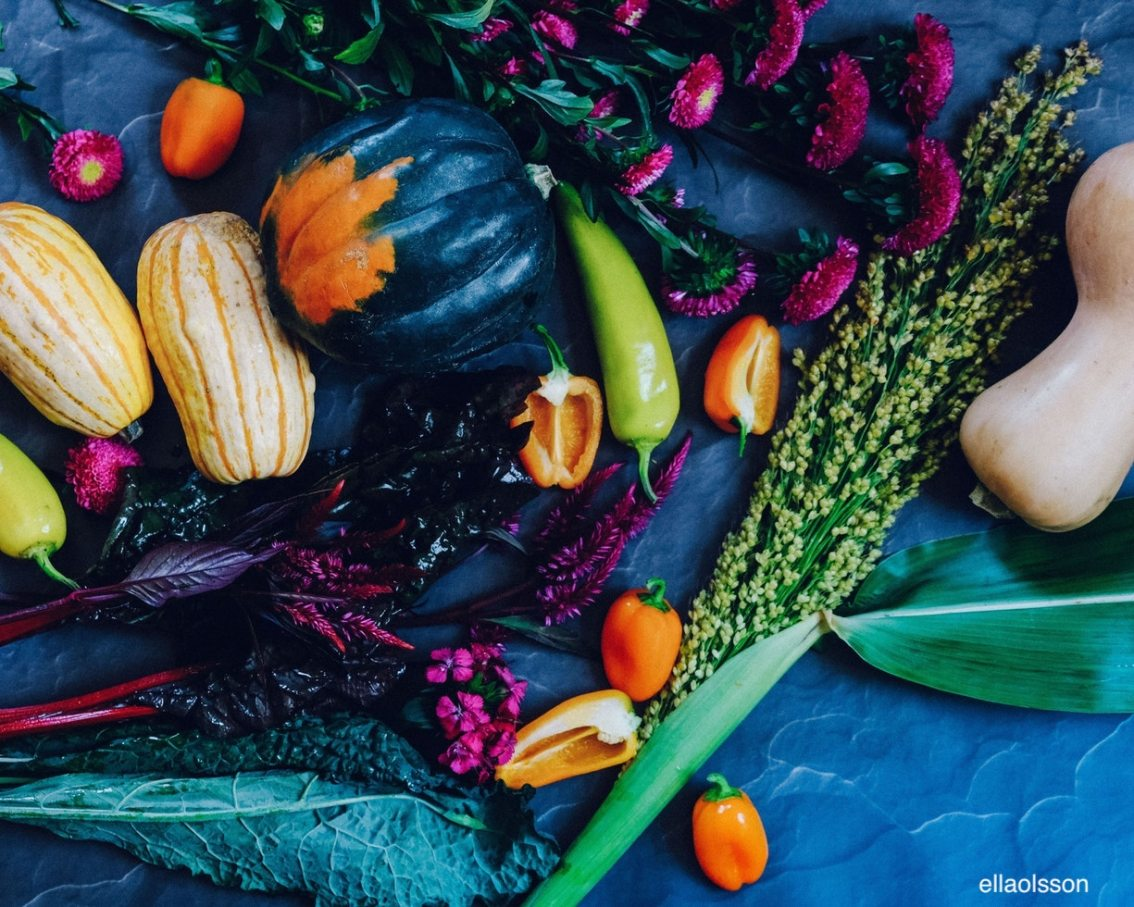 https://www.freshnlean.com/blog/-ellaolsson-fall-veggies-explosion-color