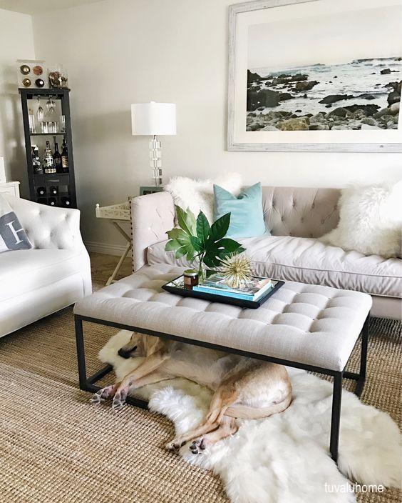 truvalhome-dog-sleeping-on-sheepskin