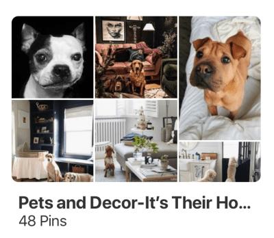 littleblackdomicile-pinterest-pets-decor-homes