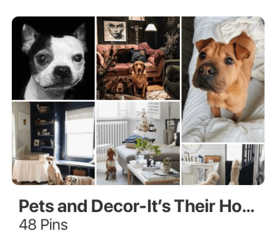 littleblackdomicile-pinterest-pets-decor-homes
