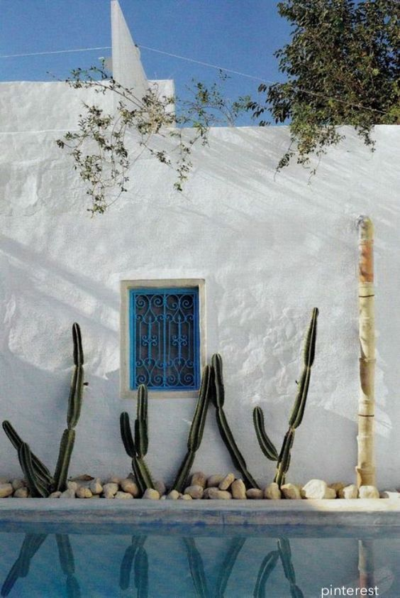 cactus-stucco--littleblackdomicile-pools-summer-entertaining
