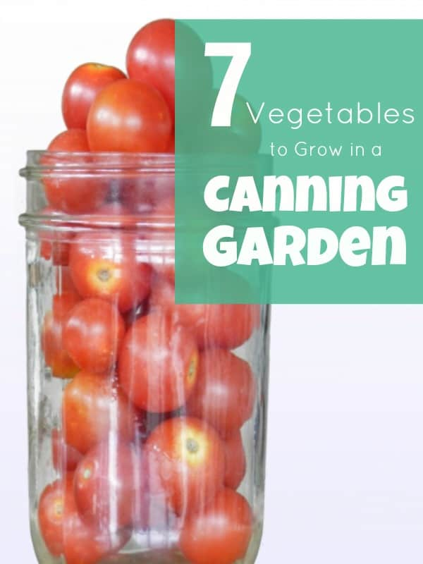 7 Vegetables to Grow in a Canning Garden