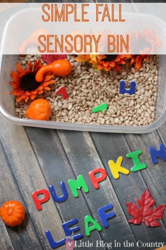 fall-sensory-bin