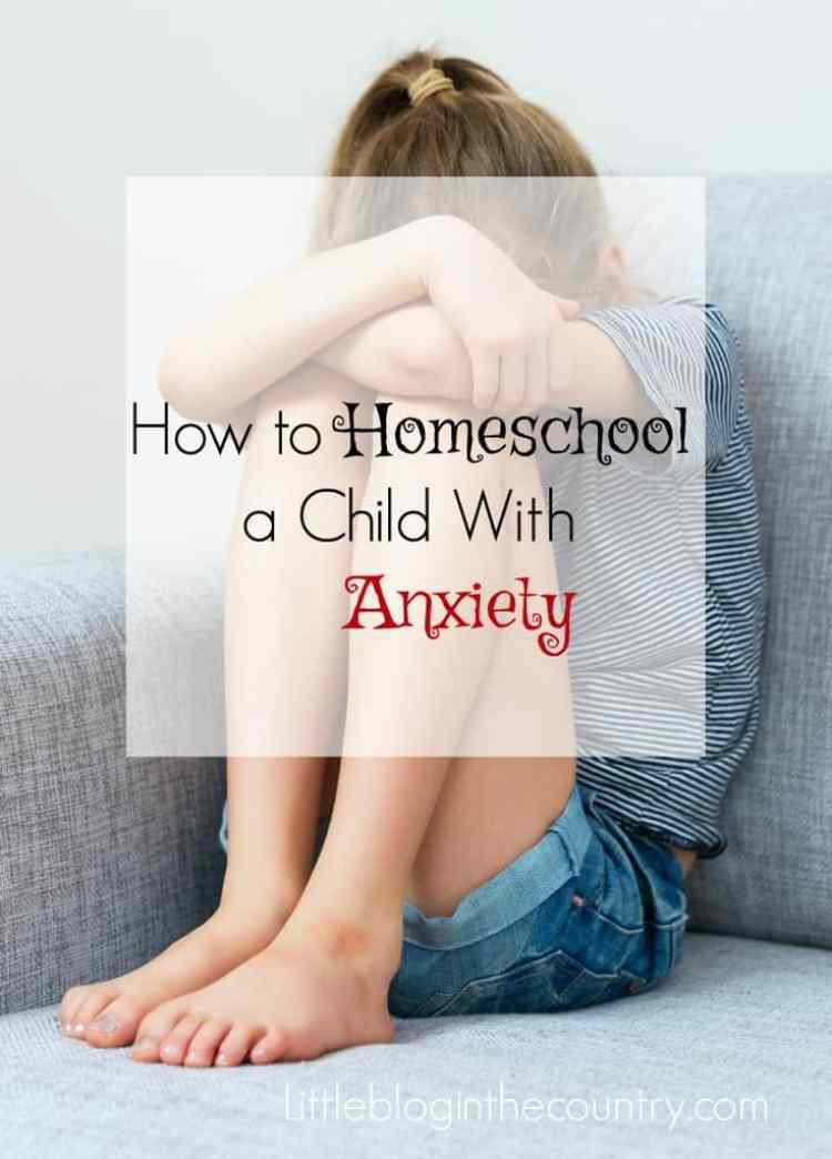 How to Homeschool a child with anxiety