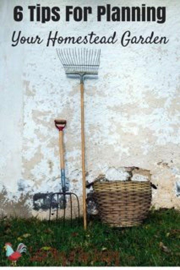6 Tips for Planning Your Homestead Garden