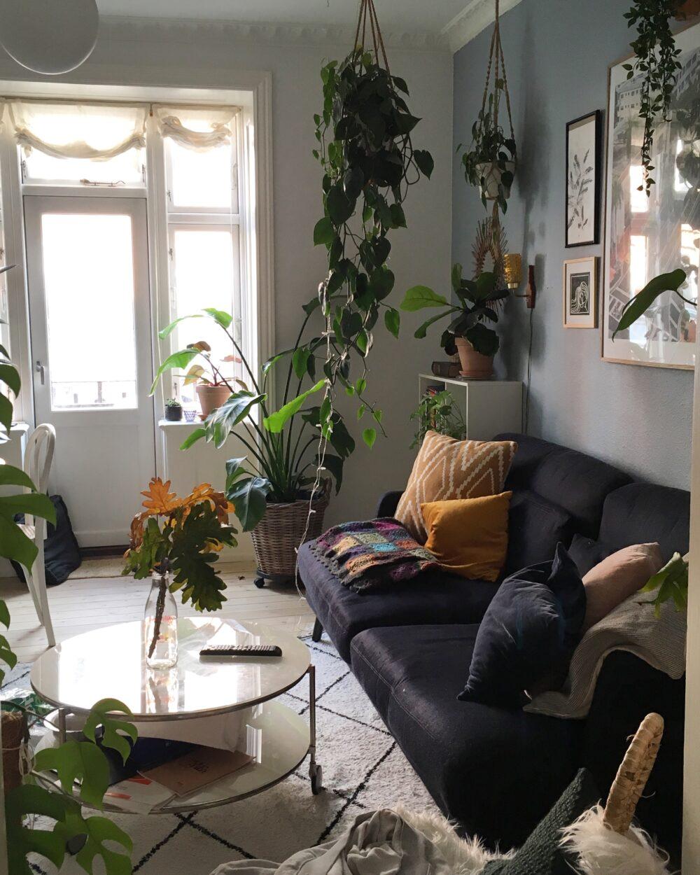 forbered dine planter til efterår