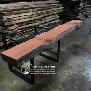 Knotty redwood tree woo slab