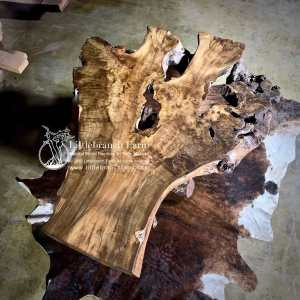 Live edge burl wood furnitue