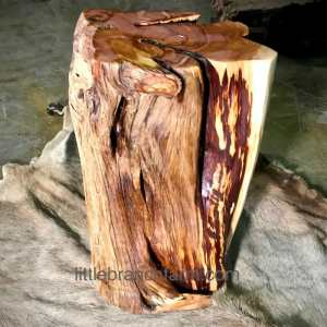 log tree stump table