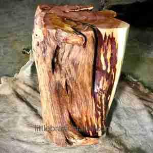 log tree stump table