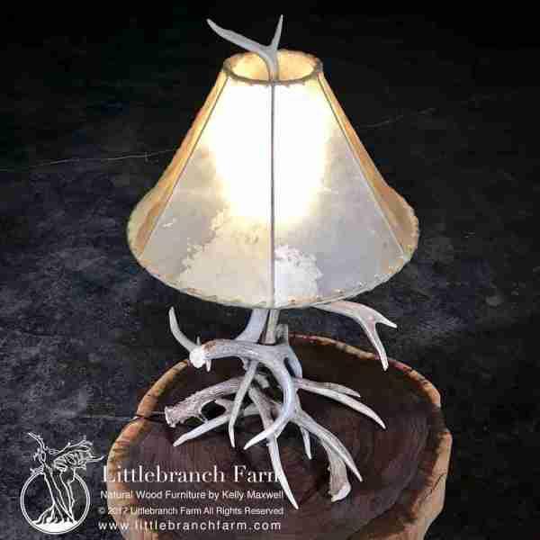 Real antler lamp