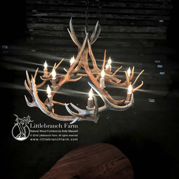 12 light elk antler chandelier
