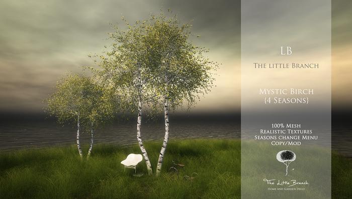 Little Branch Mystic Birch {4 Seasons}