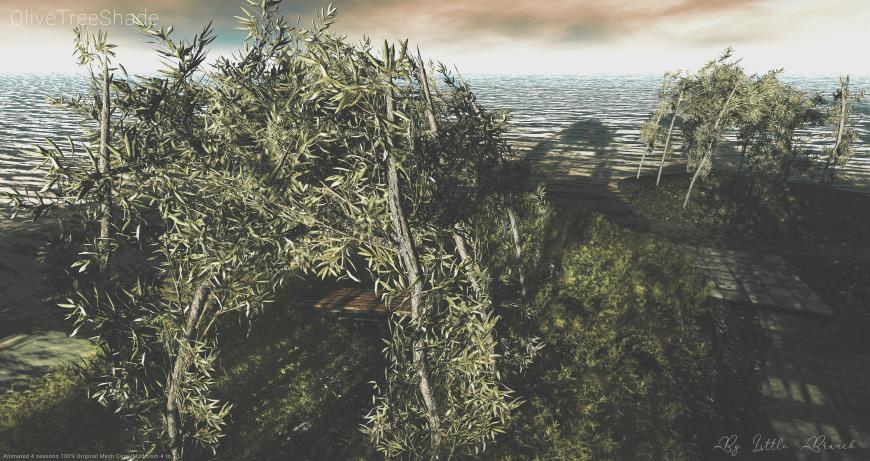 Olivetreeshade