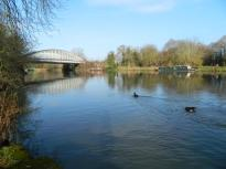 A glorious walk along the Thames ...