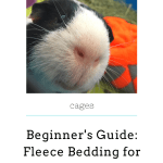 A Beginners Guide To Fleece Bedding For Guinea Pigs Little Cavy Love