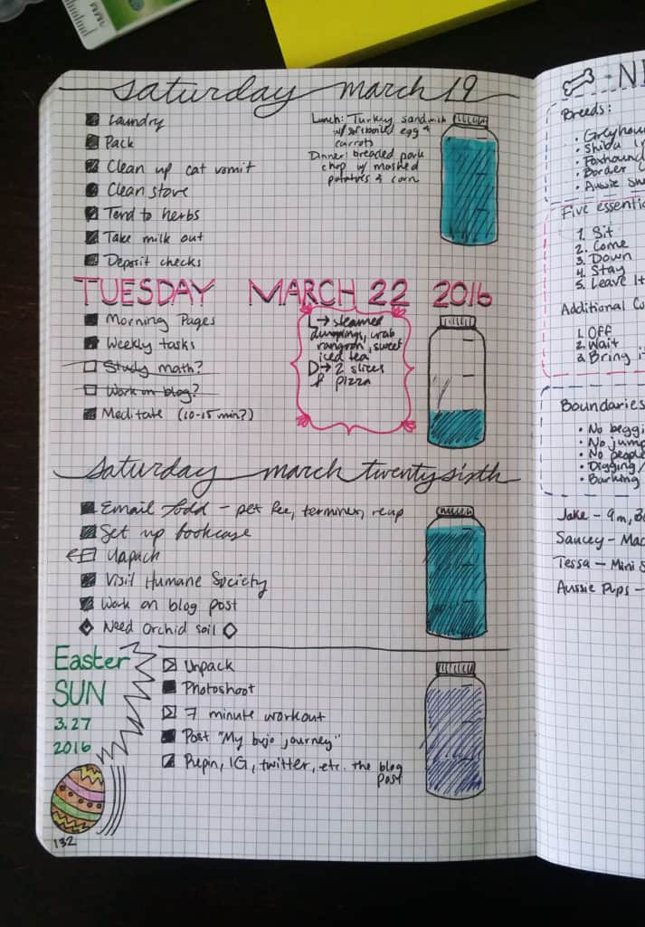 Setting Up My Bullet Journal Daily Spread LittleCoffeeFox