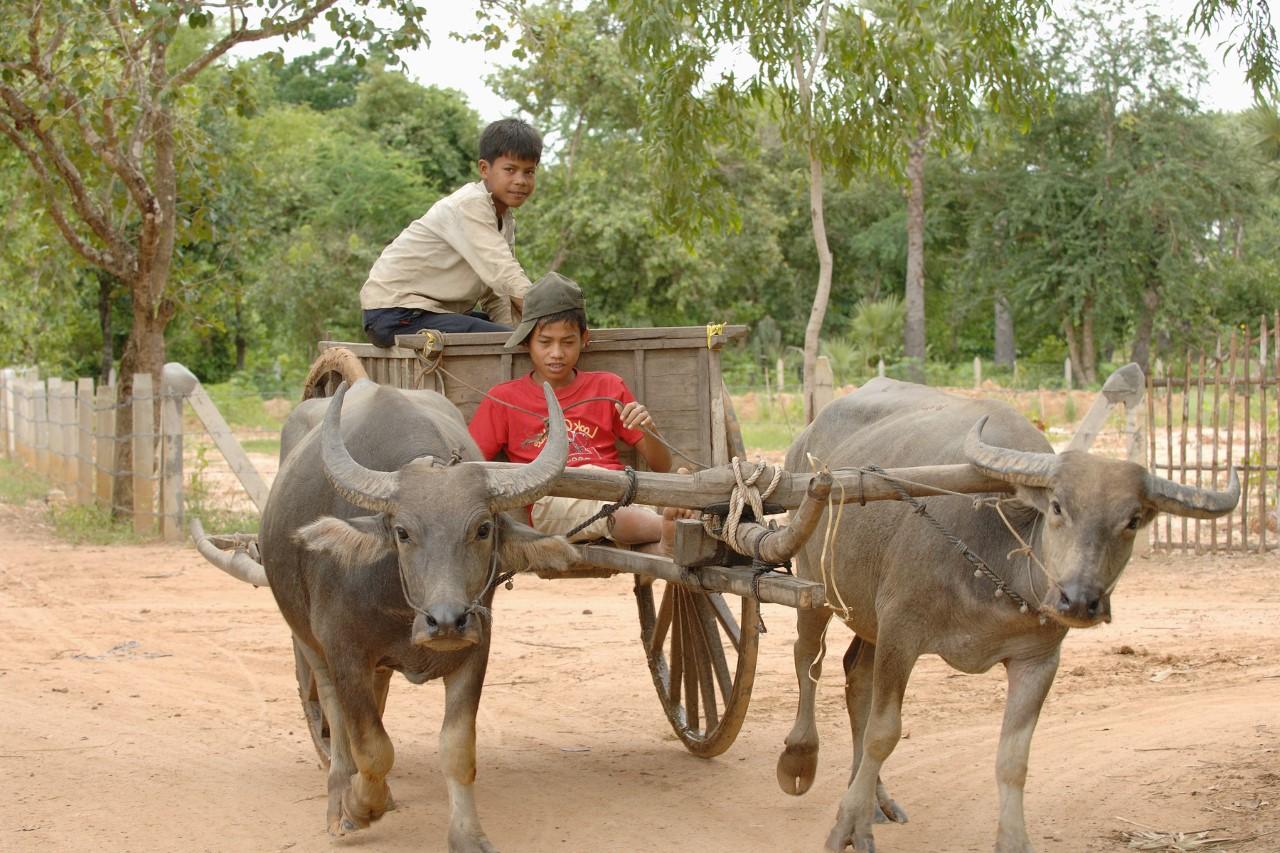 thumbnail_20070807_cambodia_0941-1 (2)