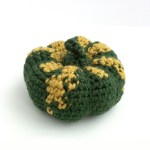 Crochet Kabocha Squash
