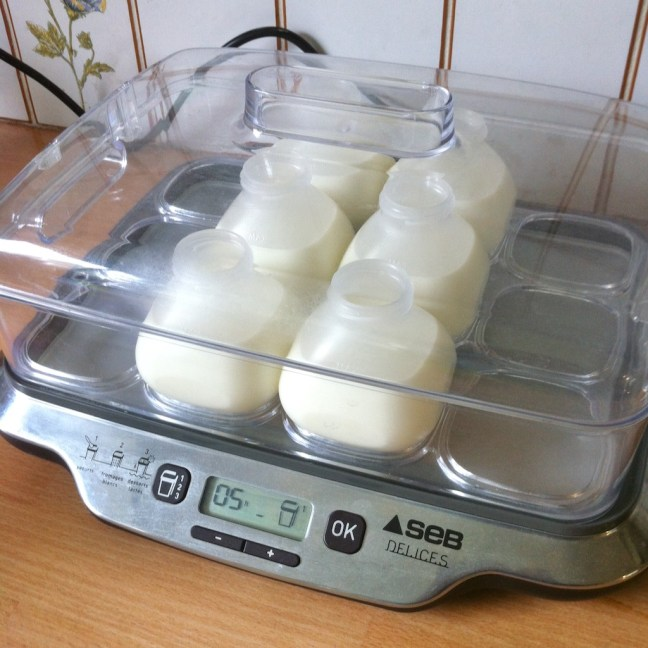 Making your own drinking yoghurt