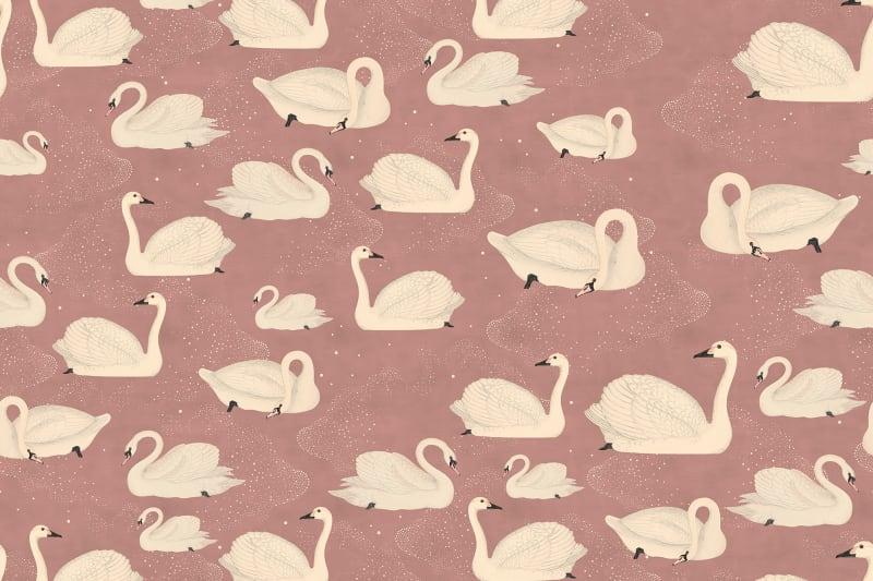 Mauve Pink Swan Wallpaper