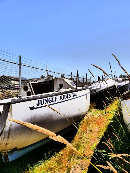 junglerides