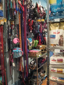 A very basic leash, collar, and harness section
