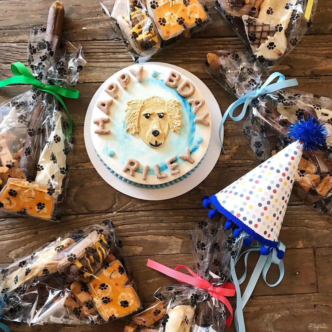 A Blue And White Birthday Cake With Dog Drawn In Icing The Middle Sit On