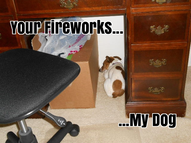 Fireworks scare many dogs