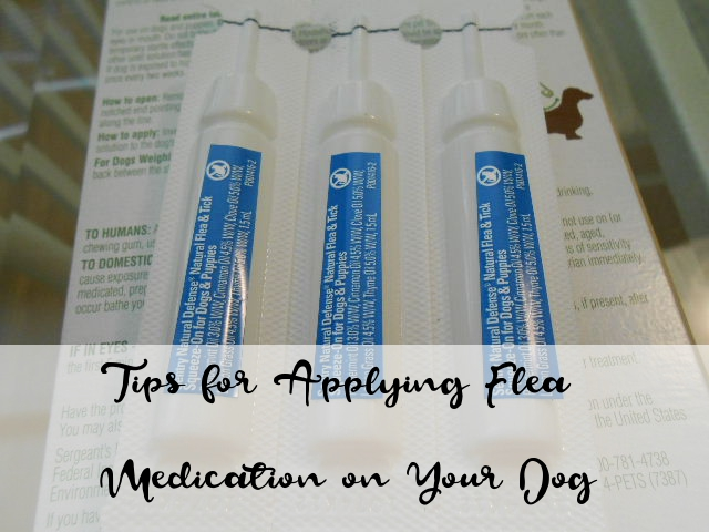 tips topical flea medication dog