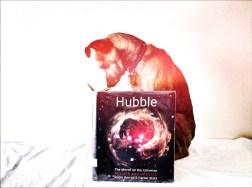 Hubble Holga