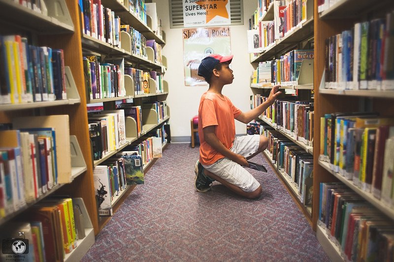 How to Avoid Library Fines and Use the Library Without Going Broke