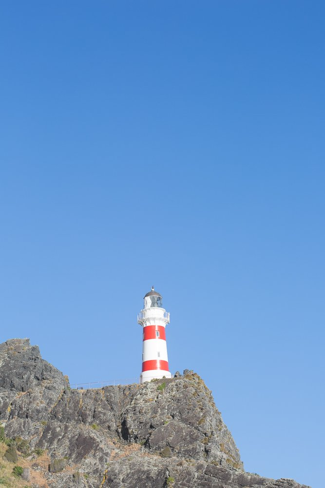Climb the 252 steps to the Cape Palliser Lighthouse.