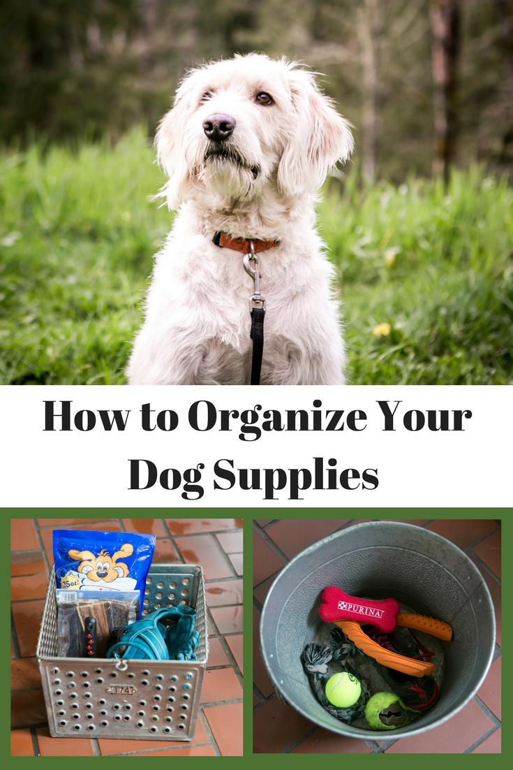 How to organize your dog supplies before you go crazy.