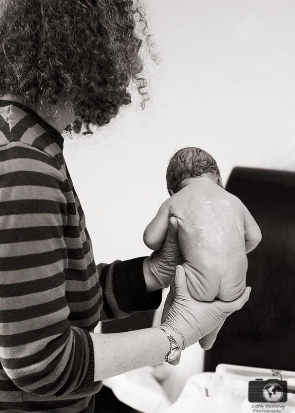 homebirth photos by Bellingham birth photographer Renee Bergeron