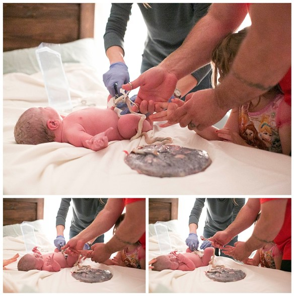 Newborn baby still attached to placenta. Captured by Bellingham birth photographer Renee Bergeron.