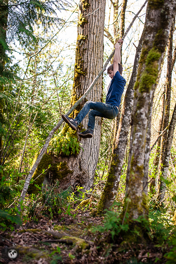 A boy swinging from a tree in the woods.
