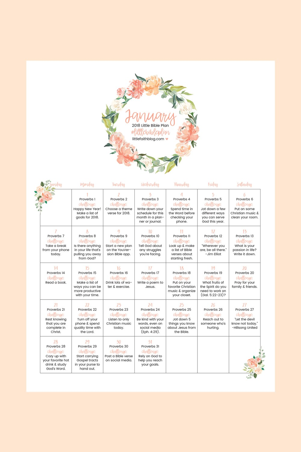 January 2018 Bible Reading Plan + 31 Day Challenge!