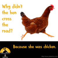 Why didn't the hen cross the road? Because she was chicken.