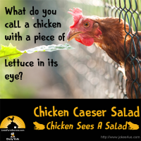 What do you call a chicken with a piece of lettuce in its eye? Chicken Caeser Salad (Chicken Sees A Salad)