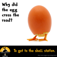 Why did the egg cross the road? To get to the shell station.