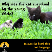 Why was the cat surprised by the young chicks? Because she heard their fowl language!