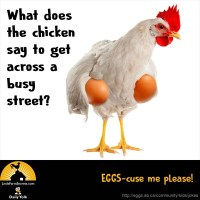 What does the chicken say to get across a busy street? EGGS-cuse me please!