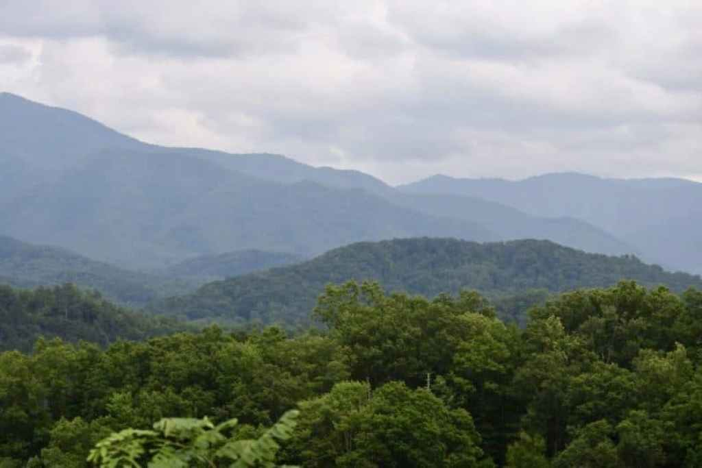 The Smoky Mountains family travel