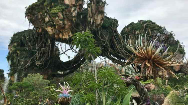3 Reasons Why You Must Visit Pandora The World Of Avatar