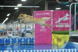 Harper flying high!