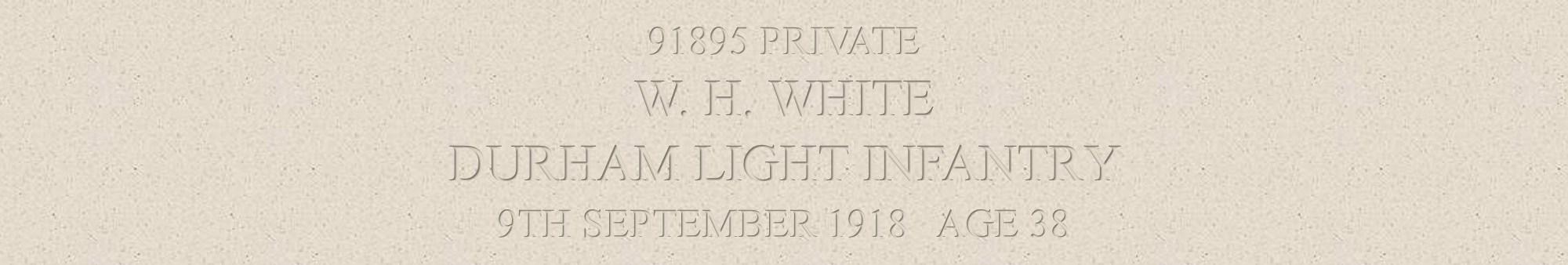 William White header