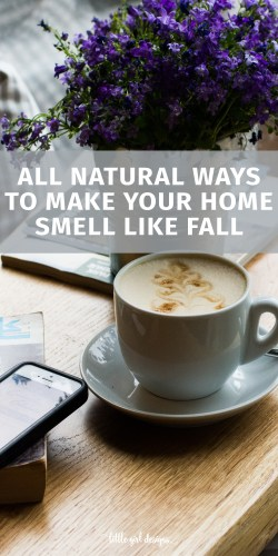 Fall is in the air! I love to find natural ways to make my home smell like fall and these recipes, DIYs, and simple tricks are perfect. I love how there are chemical free options for that yummy fall scent!