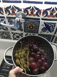 grapes & kitchen tiles.