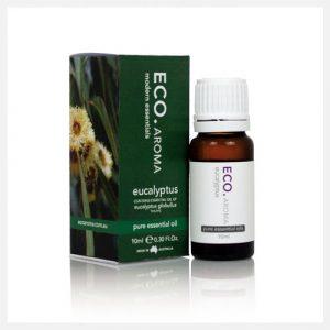 Eco Aroma Eucalyptus Essential Oil